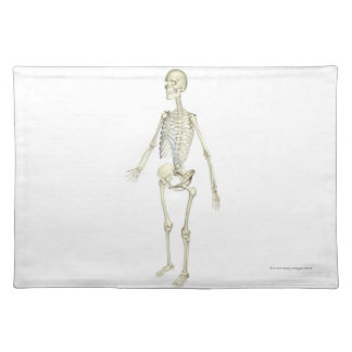 The Skeletal System Placemat