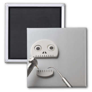 The skeleton which dental treatment is taken square magnet