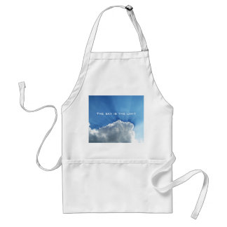 The sky is the limit standard apron