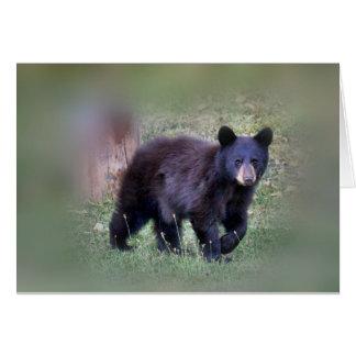 The small bear card