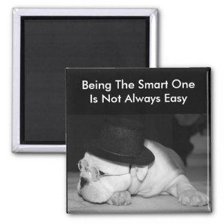 """The Smart One""...English Bulldog Puppy Square Magnet"