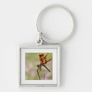 The Smiling Dragonfly Key Chains