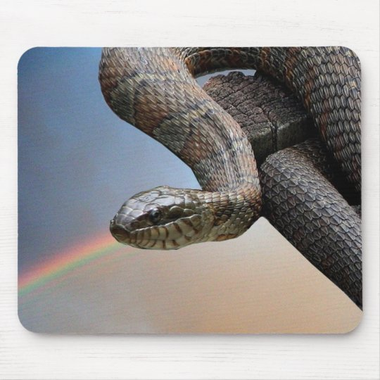 The snake and the rainbow mouse mat