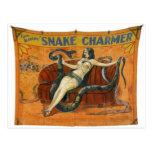 The Snake Charmer Post Cards