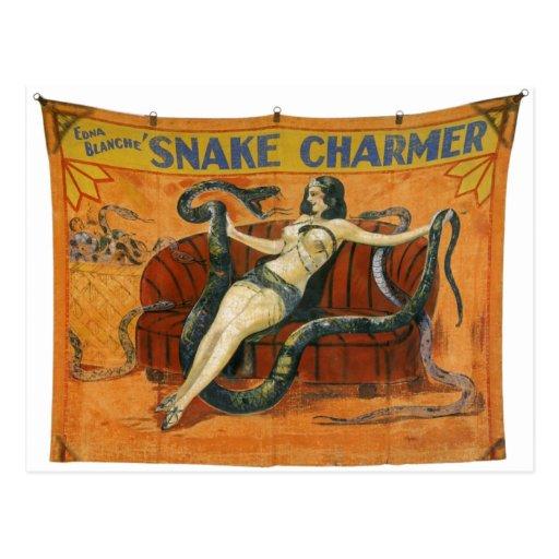 The Snake Charmer Postcard