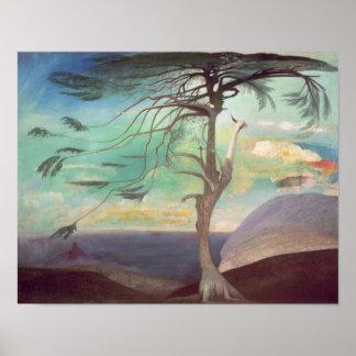 The Solitary Cedar, 1907 Poster