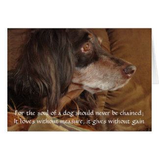 """The Soul of a Dog - """"For Milly"""" Card"""