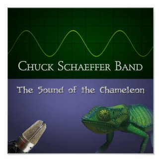 The Sound of the Chameleon Poster