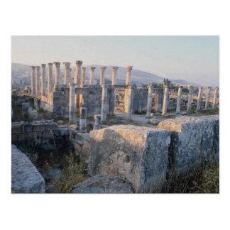 The South Decumanus, Jerash, Jordan Postcard