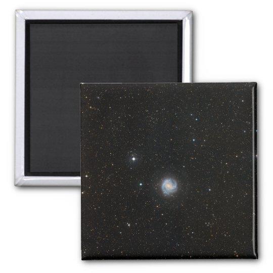 The Southern Pinwheel Galaxy 2 Magnet
