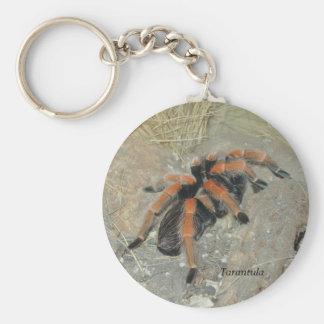 The Spider pix, Tarantula Key Ring