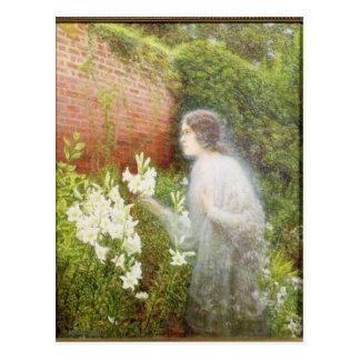 The Spirit of Purity Postcard