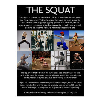 The Squat - The Universal Movement Posters