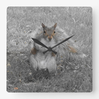 The Squirrel Did It Square Wall Clock
