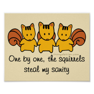The squirrels steal my sanity Design Poster