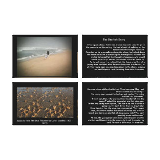The Starfish Story Canvas Gallery Wrapped Canvas