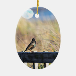 The Starling and the Fool Moon Christmas Ornament