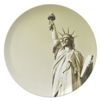 The statue of liberty plate