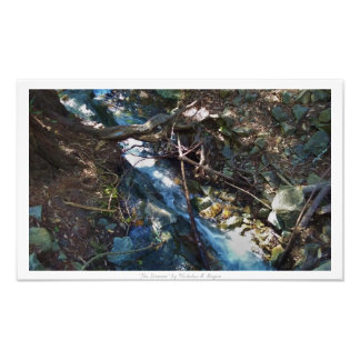 """The Stream,"" Waterfall Nature Decor Photograph"