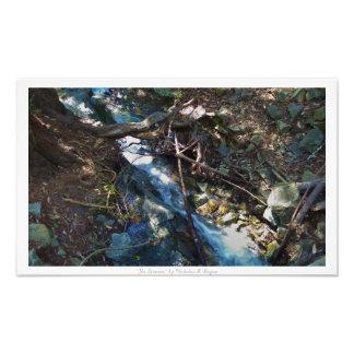 """The Stream,"" Waterfall Nature Decor Photograph"