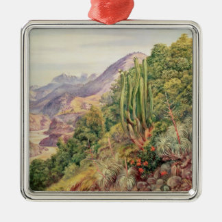 The Streams of Languenas in the Cordellera, Chile Christmas Ornament