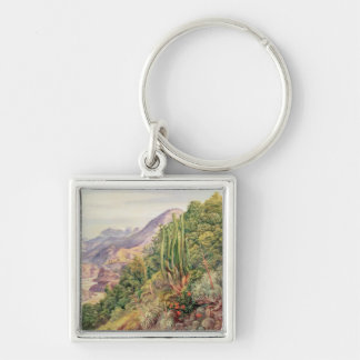 The Streams of Languenas in the Cordellera, Chile Silver-Colored Square Key Ring