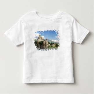 The stunning Schonbuhel Castle sits above the Tee Shirt