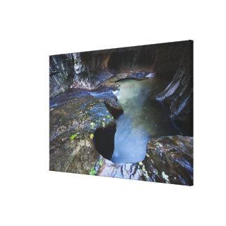 The Subway slot canyon Canvas Prints