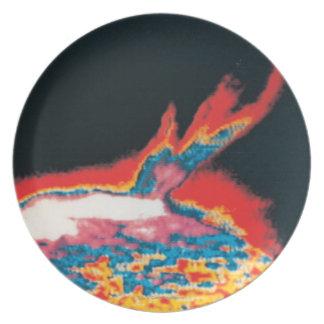 The Sun 5 Plate