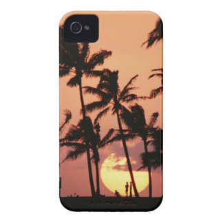 The Sun and Palm Tree iPhone 4 Case-Mate Cases