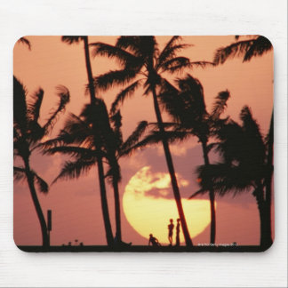 The Sun and Palm Tree Mouse Pad