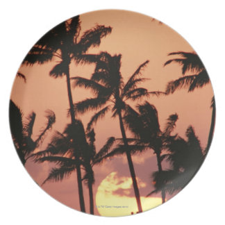 The Sun and Palm Tree Plate