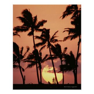 The Sun and Palm Tree Poster