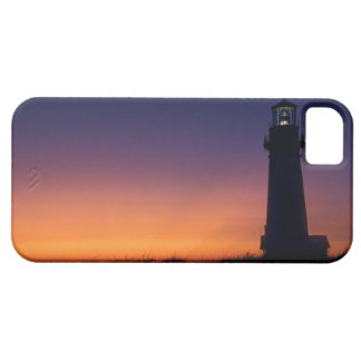 The sun ball drops down on the colorful horizon iPhone 5 covers
