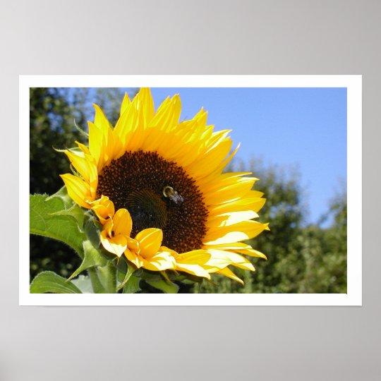 The Sun Flower Poster