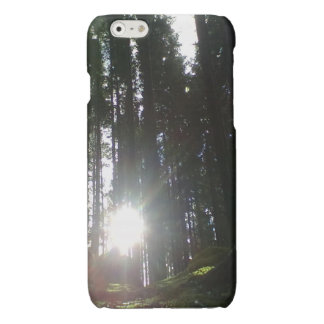 The sun in the forest iPhone 6 plus case