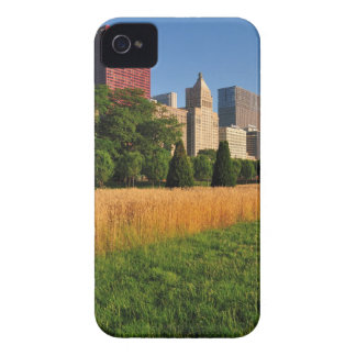 The sun, refelcts off prairie like grass in iPhone 4 cases