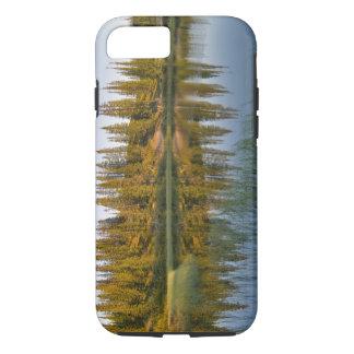 The sunrise illuminates trees on an unnamed iPhone 7 case