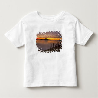 The sunrise over Isla Danzante in the Gulf of 2 Toddler T-Shirt
