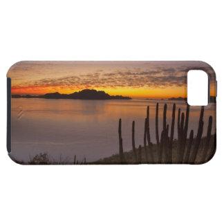 The sunrise over Isla Danzante in the Gulf of 2 Tough iPhone 5 Case