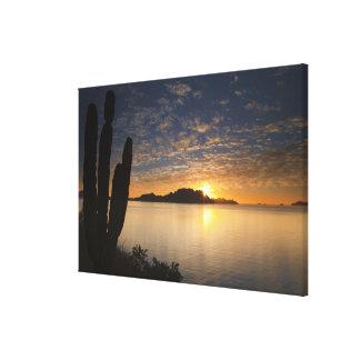 The sunrise over Isla Danzante in the Gulf of Gallery Wrap Canvas