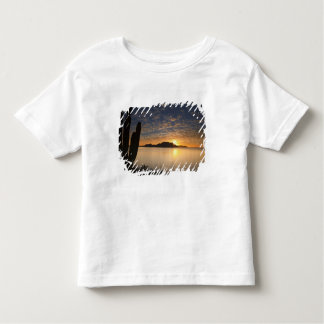 The sunrise over Isla Danzante in the Gulf of Toddler T-Shirt