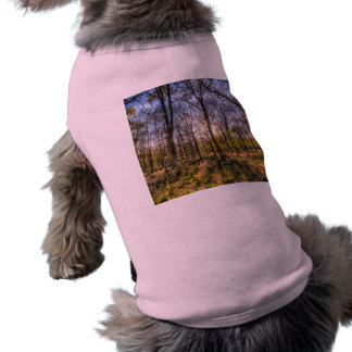 The Sunset Forest Shirt
