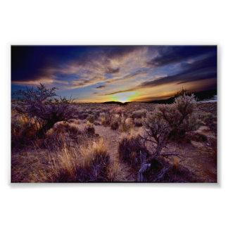 The Sunset Photographic Print