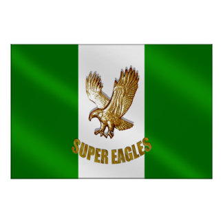 The Super Eagles of Nigeria 2010 soccer gifts Print