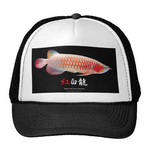 "The superior product 2 ""of Super Red Arowana"" Mesh Hats"