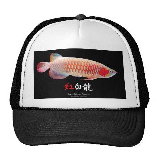 "The superior product 2 ""of Super Red Arowana"" Mesh Hats"