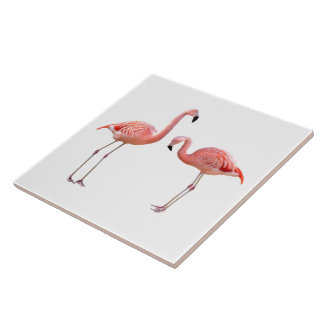 """The superior product """"of flamingo"""" tile"""