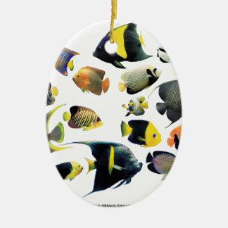The superior product of Marine angelfish Ceramic Oval Decoration