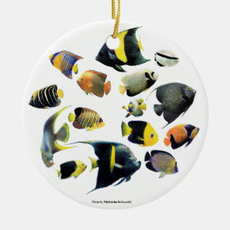 The superior product of Marine angelfish Round Ceramic Decoration
